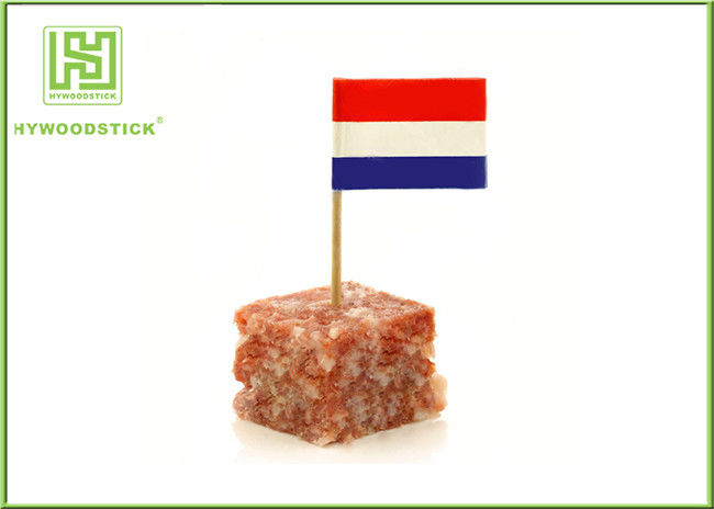 Custom International Flag Toothpicks , Different Design Cupcake Toothpicks Party Decoration Items